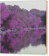 Sweet Fall Reflections Wood Print