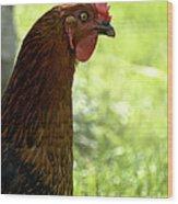 Sweet Hen Wood Print