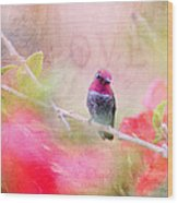 Sweet Hummingbird Love Wood Print