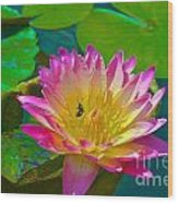 Sweet Lilly Nectar Wood Print