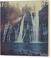 Sweet Memories Wood Print by Laurie Search