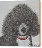 Sweet Miss Molly The Poodle Wood Print