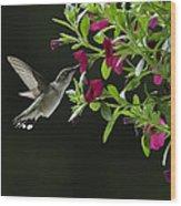 Sweet Nectar Wood Print