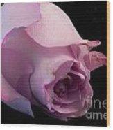 Sweet Onament -the Rose Wood Print