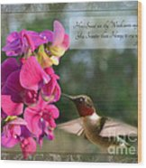 Sweet Pea Hummingbird Iv With Verse Wood Print by Debbie Portwood