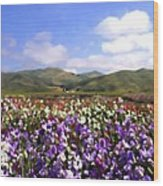 Sweet Peas Galore Wood Print