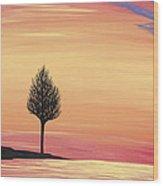 Sweet Raspberry Sunset Wood Print
