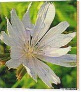 Sweet Summer Tears Wood Print