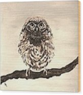 Sweetest Owl Wood Print