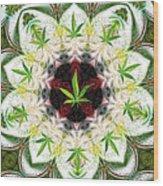 Sweetleaf Mandala Wood Print