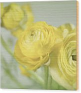Swell Of Yellow Wood Print