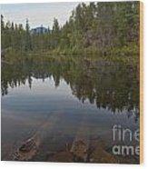 Swim Lake Wood Print