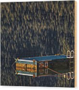Swim Platform On Lake Quinault Wood Print