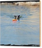 Swimmer In The Truckee River Wood Print