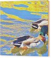 Swimming Along Wood Print