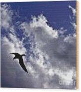 Swimming Through The Sky Wood Print