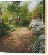 Swing In The Garden Wood Print by Sandy Keeton