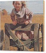 Swinging On A Gate Detail Wood Print