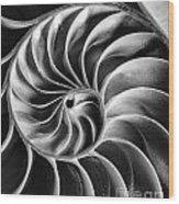 Swirl IIi Wood Print
