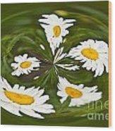 Swirl Of Daisies Wood Print