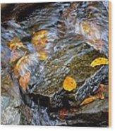 Swirling Stream Of Leaves  Wood Print