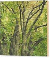 Swirls Of Green Wood Print