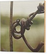 Swirly Branch Wood Print