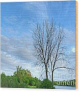 Swirly Sky And Tree Wood Print