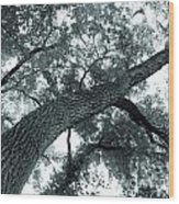 Swirly Tree Wood Print