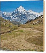 Swiss Alps - Schreckhorn And Valley Wood Print