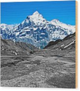 Swiss Alps - Schreckhorn And Valley In Black And White Wood Print