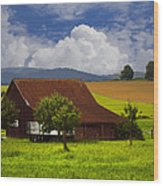 Swiss Farms Wood Print