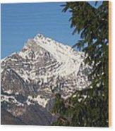 Swiss Wood Print