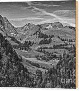 Swiss Valley Bw Wood Print