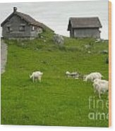 Switzerland Wood Print by Gregory Dyer
