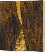 Sword Of Damocles Wood Print