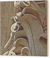 Sword's Power Wood Print