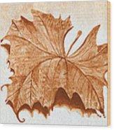 Sycamore #1 Oklahoma Red Dirt Artwork Tm Wood Print