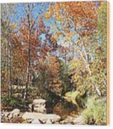 Sycamore And Cottonwood Trees Along The East Verde River Wood Print