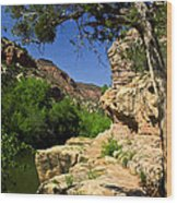 Sycamore Canyon Wood Print
