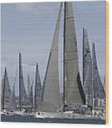 Sydney To Hobart Yacht Race Wood Print