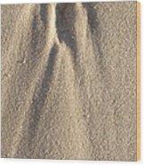 Sylt Angel Wood Print