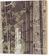 Symmetrical Evergreens  Wood Print