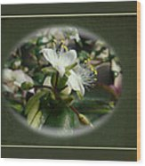 Sympathy Greeting Card - Elegant Floral Green And White Wood Print