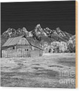 T A Moulton Barn Wood Print