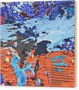 T S 13 Wood Print