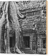 Ta Prohm Roots And Stone 01 Wood Print