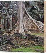 Ta Prohm Temple Ruins Wood Print