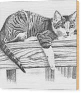 Tabby Cat Wood Print