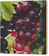 Table Grapes Closeup Wood Print by Craig Lovell